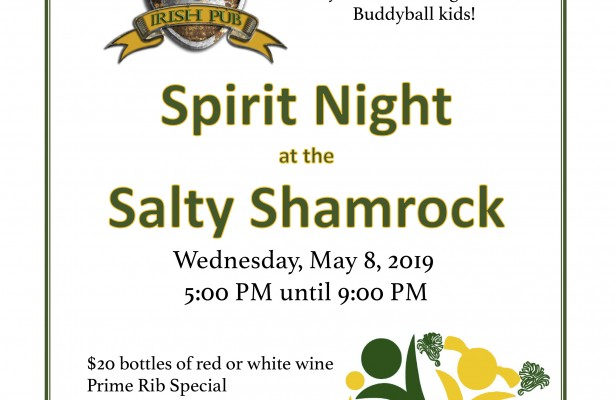 Buddyball Spirit Night